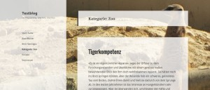Hintergrund für eine einzelne WordPress Kategorie