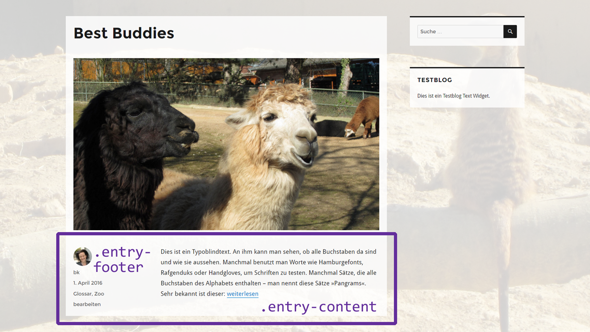 WordPress Post Meta Angaben im Twenty Sixteen Theme