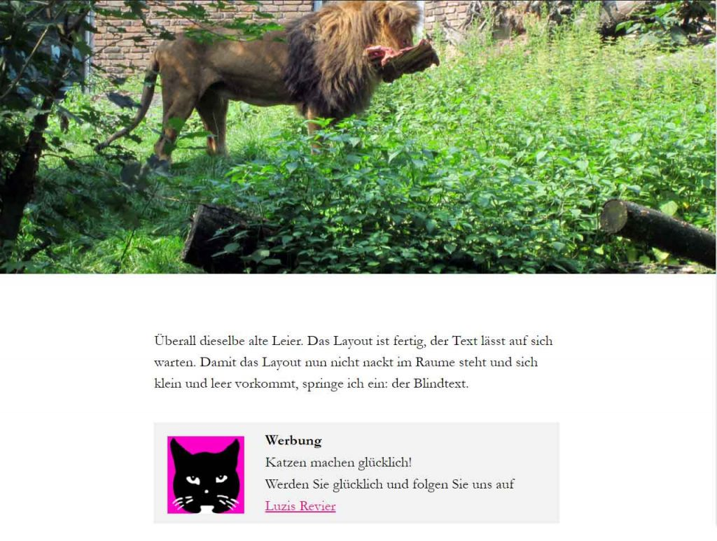 Benutzerdefiniertes Feld im WordPress Theme Twenty Twenty - innerhalb des Loops