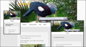 WordPress Header Größe (Twenty Seventeen)