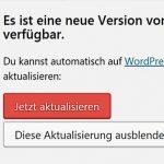 Seit Version 4.9.3 funktioniert das WordPress Auto Update nicht mehr.