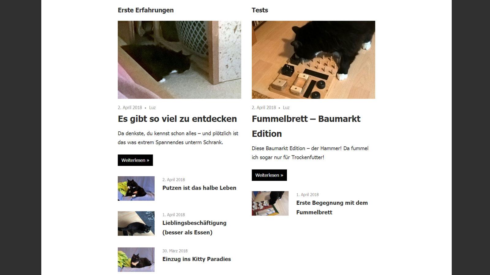 Berühmt 3 Spalten Blogger Vorlagen Galerie - Entry Level Resume ...