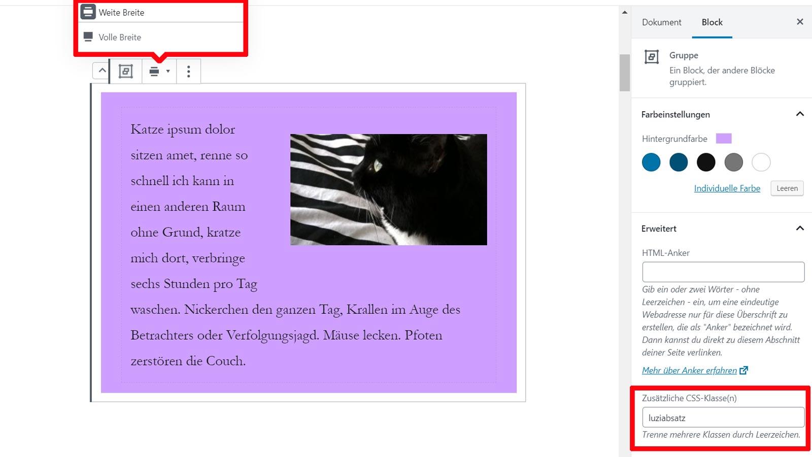 Die Optionen der WordPress Gutenberg Gruppe: Farbeinstellungen und Erweitert