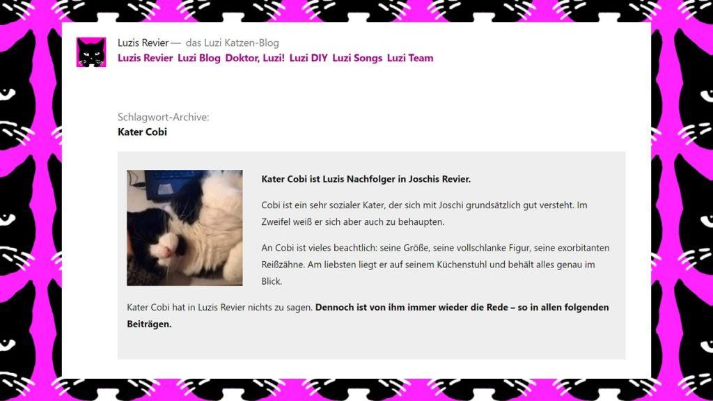 WordPress Schlagwort Beschreibung ausgeben Theme Twenty Nineteen: Beispiel luzis-revier.de