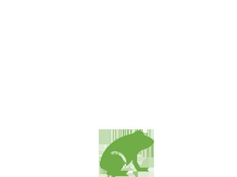 Frosch Piktogramm
