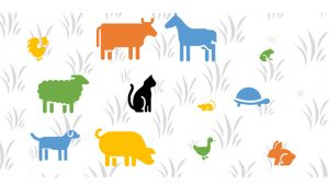 In WordPress Galerie Links einfügen: Einige der Tiere verlinken auf andere Seiten