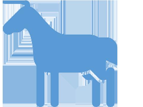 Pferd Piktogramm