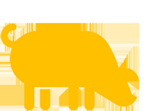Schwein Piktogramm